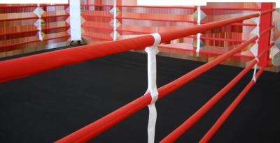 Premium Manufacturer of Martial arts & Boxing, MMA Equipments | STEDYX